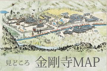 見どころ金剛寺MAP